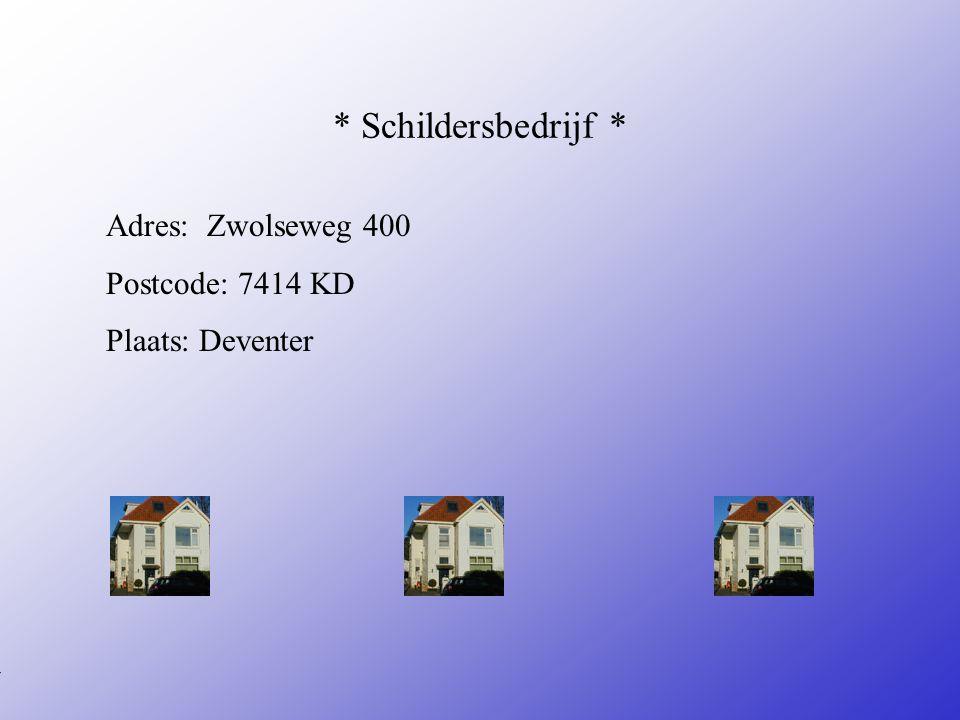 * Schildersbedrijf * Adres: Zwolseweg 400 Postcode: 7414 KD Plaats: Deventer **Wat voor bedrijf is het .