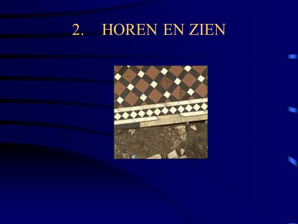 2.HOREN EN ZIEN