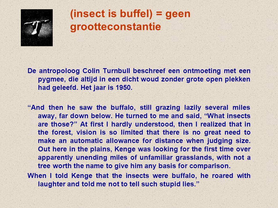 (insect is buffel) = geen grootteconstantie De antropoloog Colin Turnbull beschreef een ontmoeting met een pygmee, die altijd in een dicht woud zonder grote open plekken had geleefd.