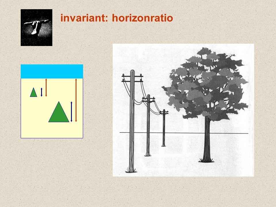 invariant: horizonratio