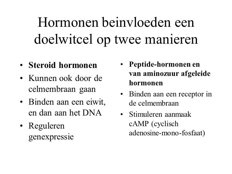 Hormonen beinvloeden een doelwitcel op twee manieren Steroid hormonen Kunnen ook door de celmembraan gaan Binden aan een eiwit, en dan aan het DNA Reguleren genexpressie Peptide-hormonen en van aminozuur afgeleide hormonen Binden aan een receptor in de celmembraan Stimuleren aanmaak cAMP (cyclisch adenosine-mono-fosfaat)