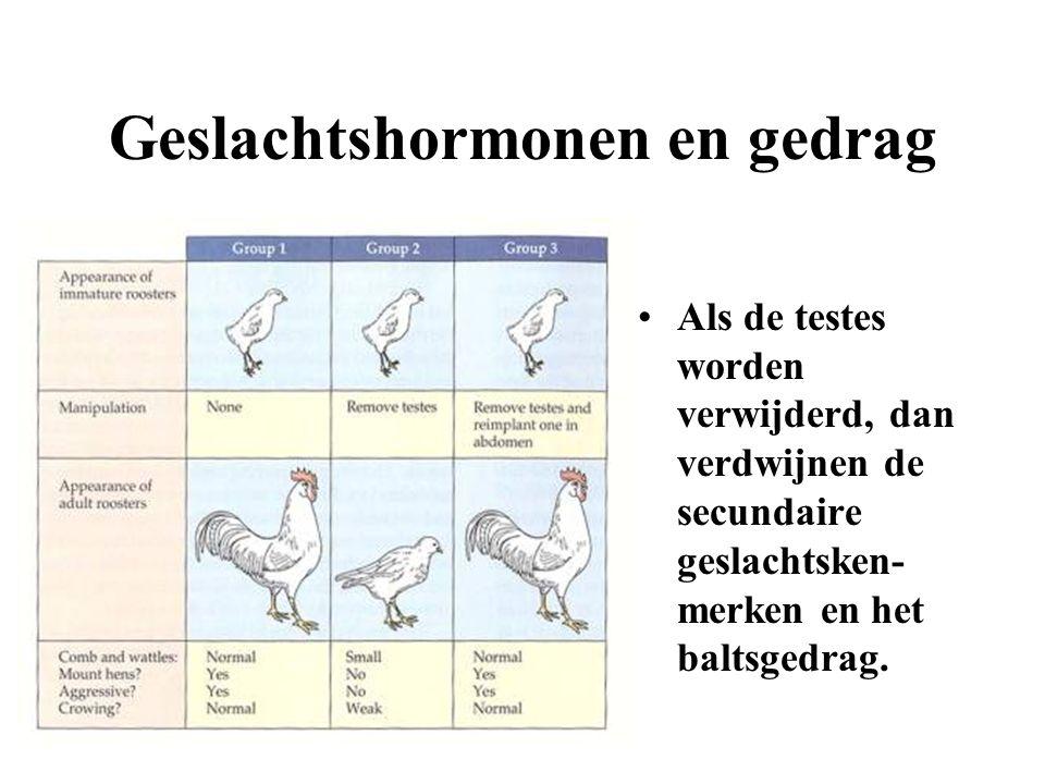 Geslachtshormonen en gedrag Als de testes worden verwijderd, dan verdwijnen de secundaire geslachtsken- merken en het baltsgedrag.