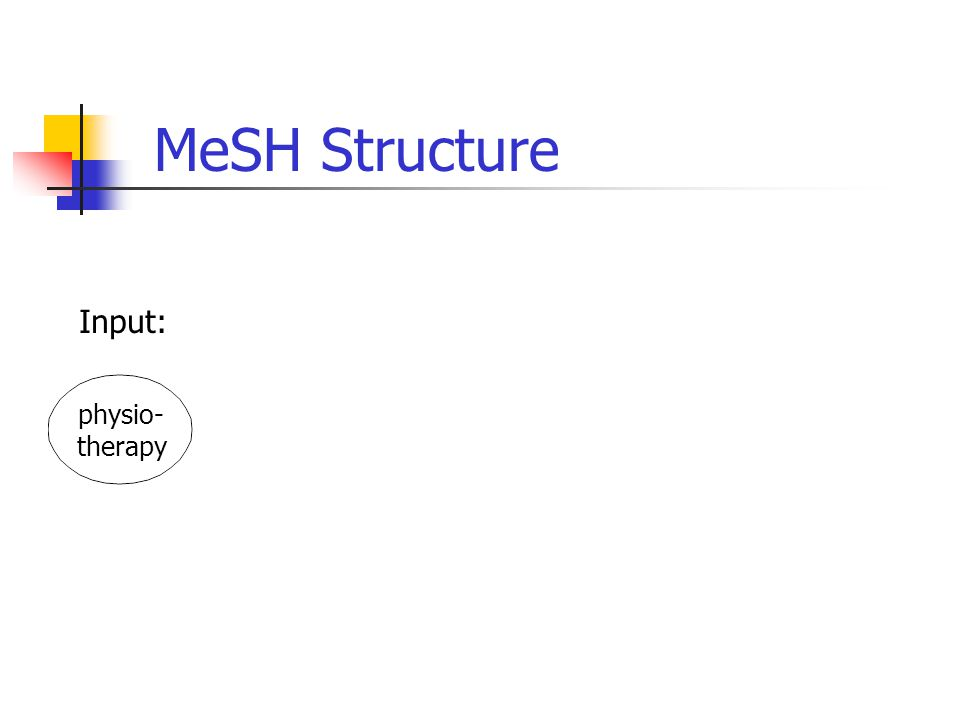 physio- therapy MeSH Structure Input: