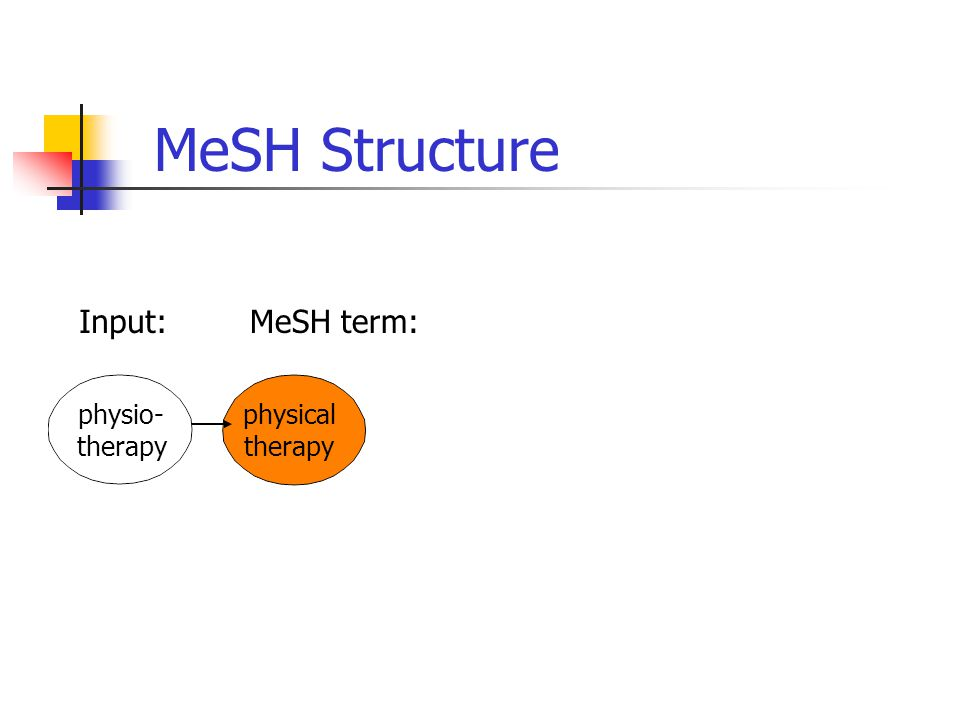 physical therapy physio- therapy MeSH Structure Input:MeSH term: