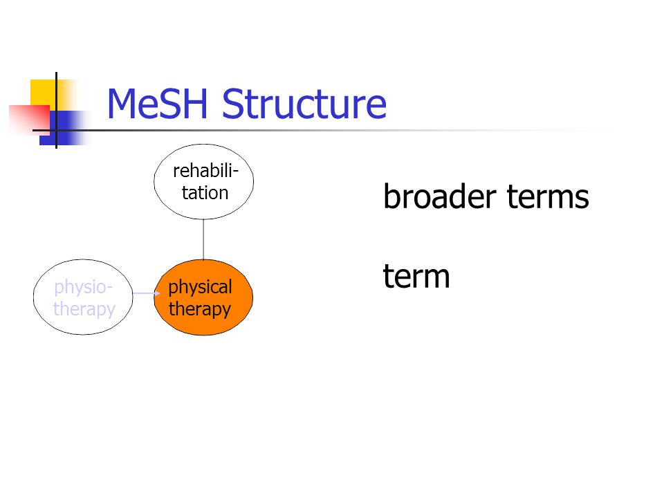 broader terms term physical therapy rehabili- tation physio- therapy MeSH Structure
