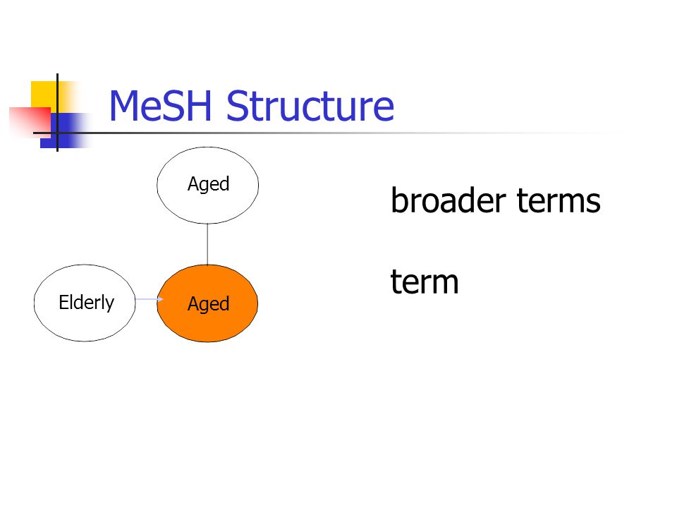 broader terms term Aged MeSH Structure Elderly Aged