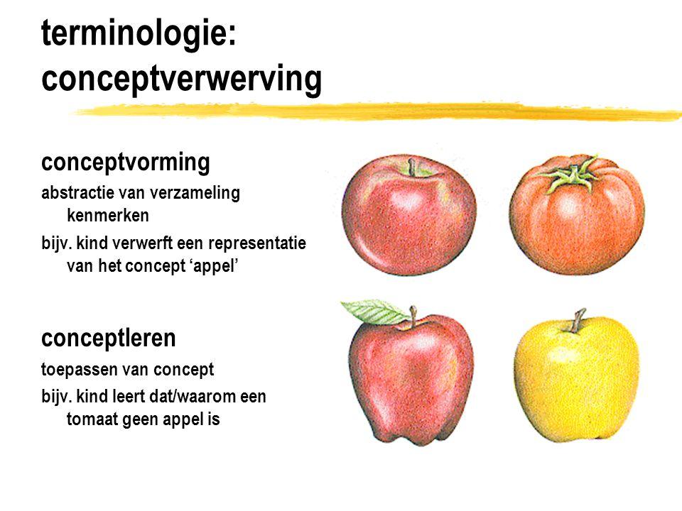 terminologie: categorie 1.