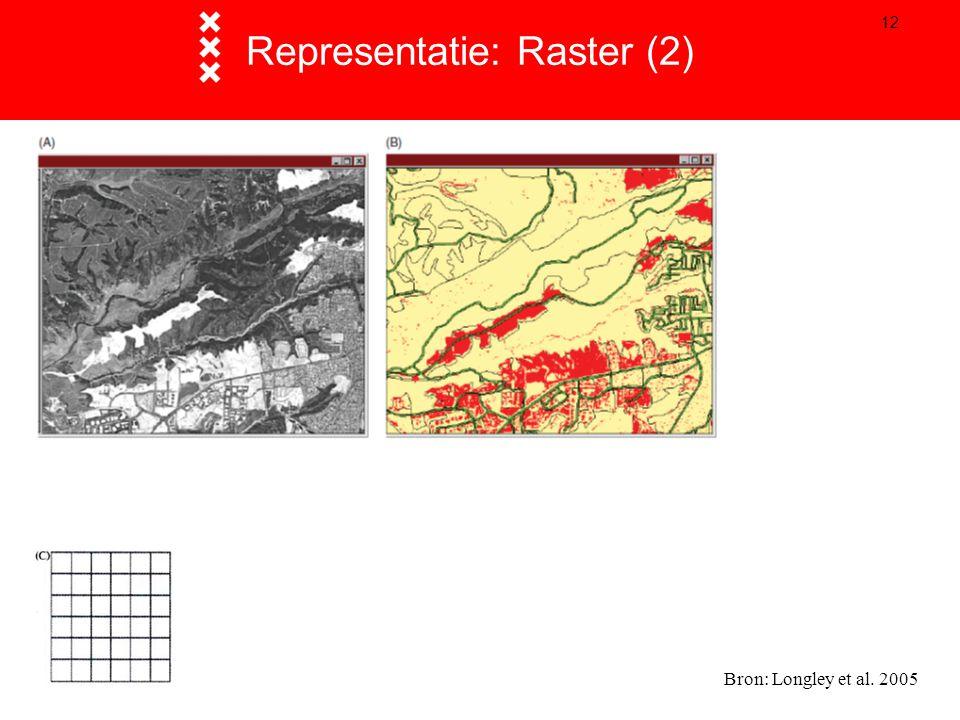 12 Representatie: Raster (2) Bron: Longley et al. 2005