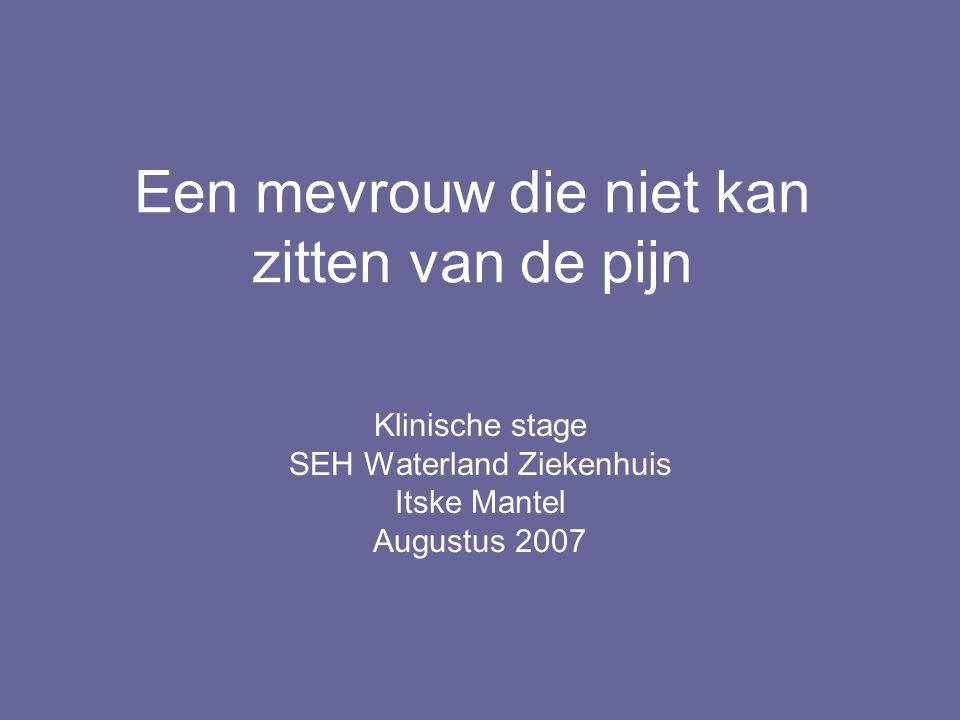 Een mevrouw die niet kan zitten van de pijn Klinische stage SEH Waterland Ziekenhuis Itske Mantel Augustus 2007