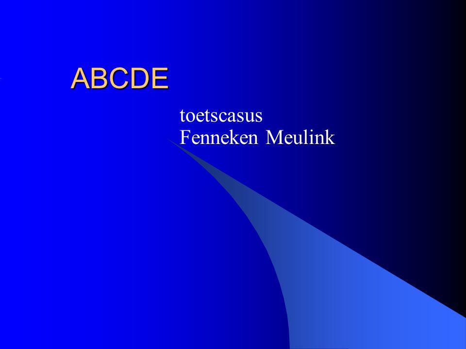 ABCDE toetscasus Fenneken Meulink