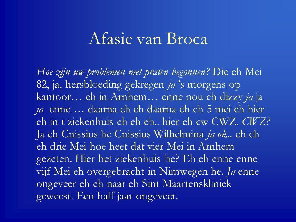 Afasie van Broca Hoe zijn uw problemen met praten begonnen.