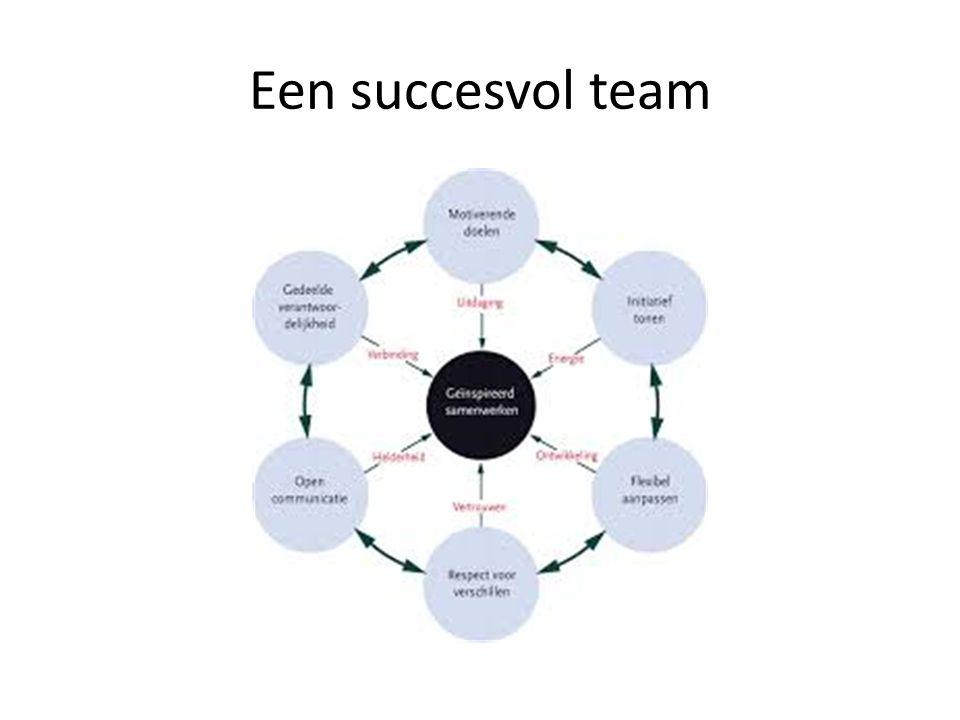 Een succesvol team