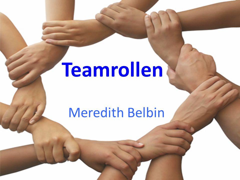 Teamrollen Meredith Belbin