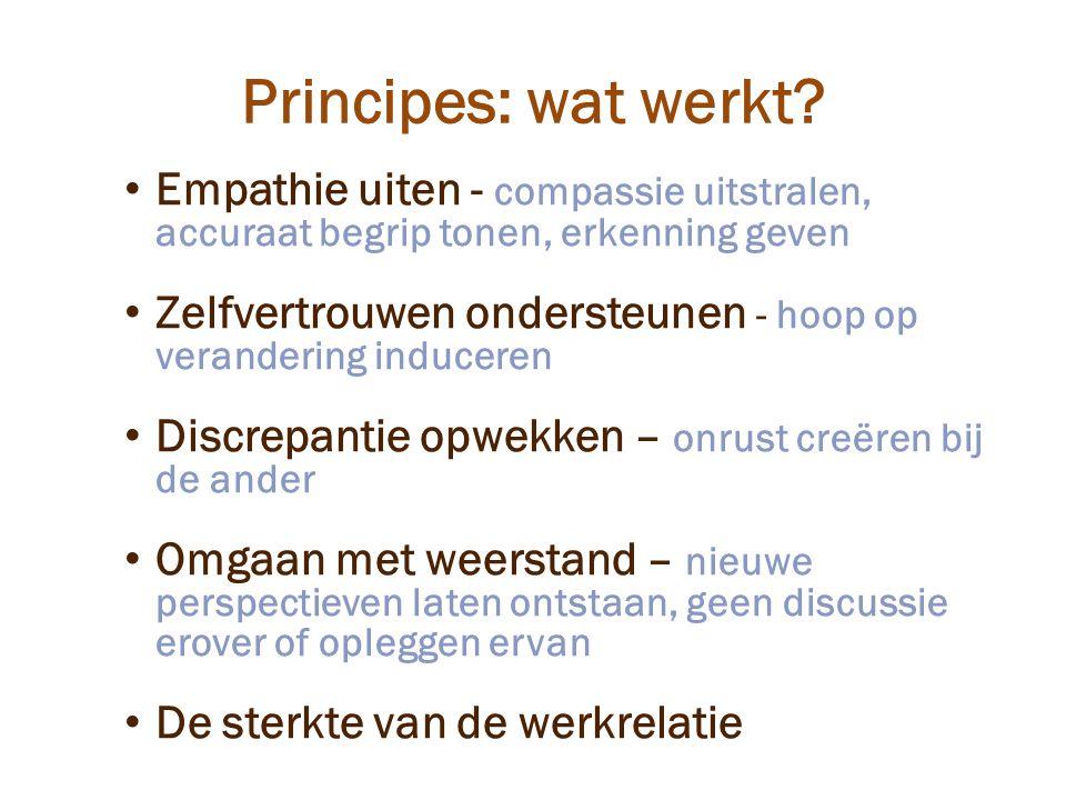 Principes: wat werkt.