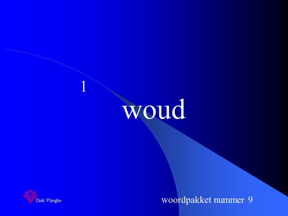 woordpakket nummer 9 Je zorgt voor een vulpen en een groene balpen.