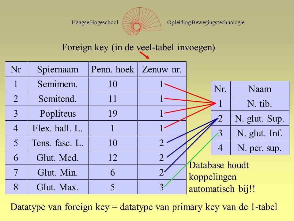 Opleiding BewegingstechnologieHaagse Hogeschool Foreign key (secondary index) NrSpiernaamPenn.