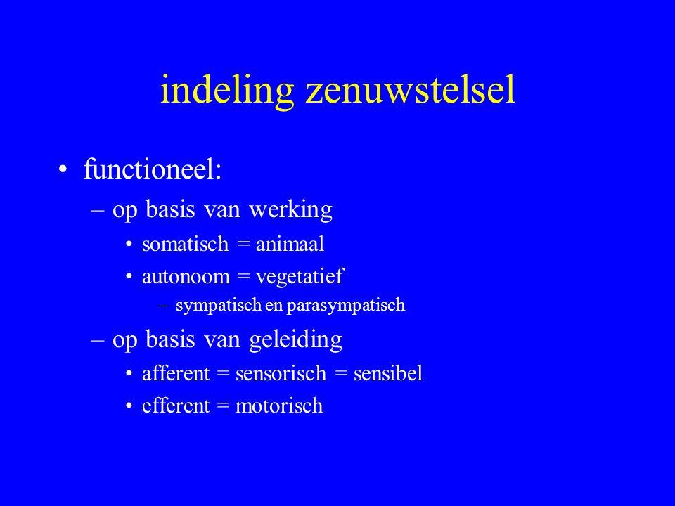 indeling zenuwstelsel functioneel: –op basis van werking somatisch = animaal autonoom = vegetatief –sympatisch en parasympatisch –op basis van geleidi