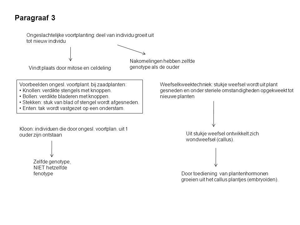 Paragraaf 3 Ongeslachtelijke voortplanting: deel van individu groeit uit tot nieuw individu Vindt plaats door mitose en celdeling Nakomelingen hebben