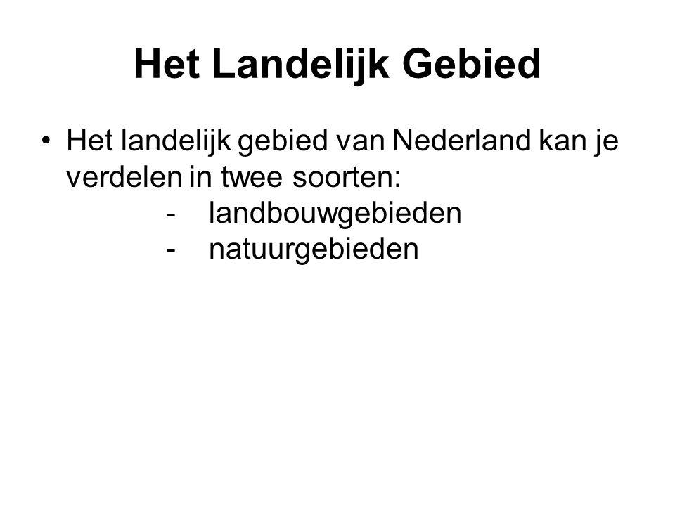 Het Landelijk Gebied Het landelijk gebied van Nederland kan je verdelen in twee soorten: - landbouwgebieden - natuurgebieden