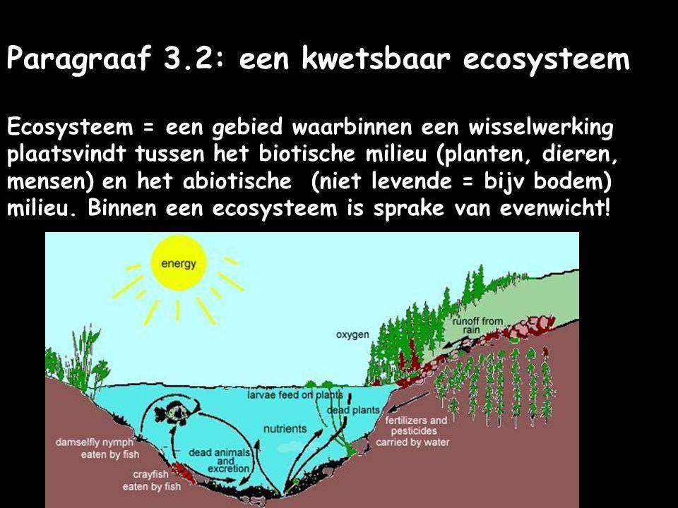 Paragraaf 3.2: een kwetsbaar ecosysteem Ecosysteem = een gebied waarbinnen een wisselwerking plaatsvindt tussen het biotische milieu (planten, dieren,