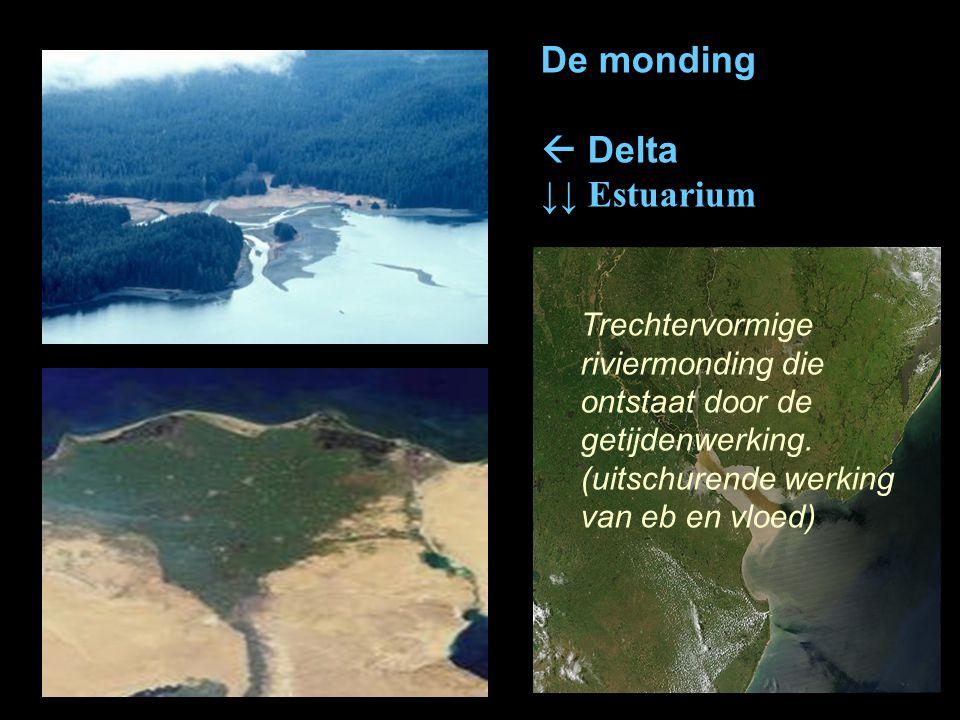 De monding  Delta ↓↓ Estuarium Trechtervormige riviermonding die ontstaat door de getijdenwerking. (uitschurende werking van eb en vloed)