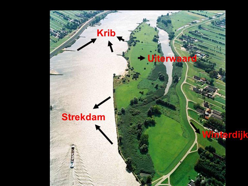 Krib Strekdam Winterdijk Uiterwaard