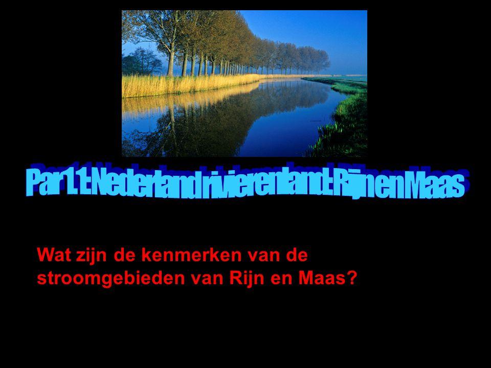 Wat zijn de kenmerken van de stroomgebieden van Rijn en Maas?