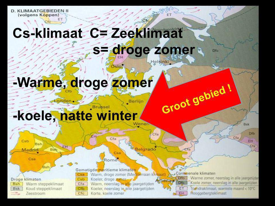 Cs-klimaat C= Zeeklimaat s= droge zomer -Warme, droge zomer -koele, natte winter Groot gebied !