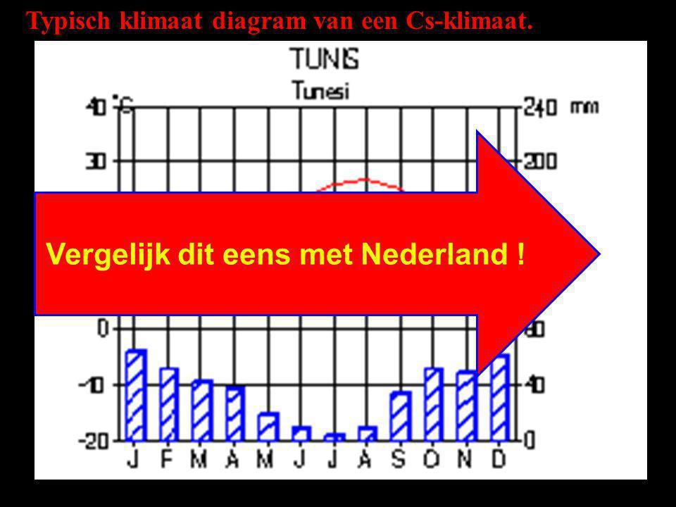 Typisch klimaat diagram van een Cs-klimaat. Vergelijk dit eens met Nederland !