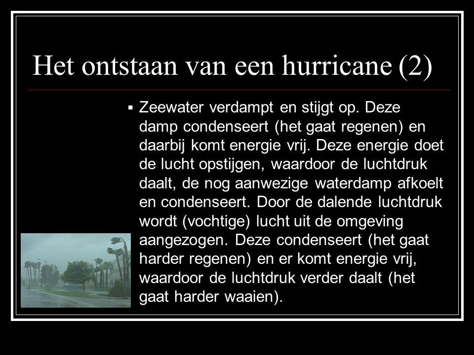 Het ontstaan van een hurricane (2)  Zeewater verdampt en stijgt op.