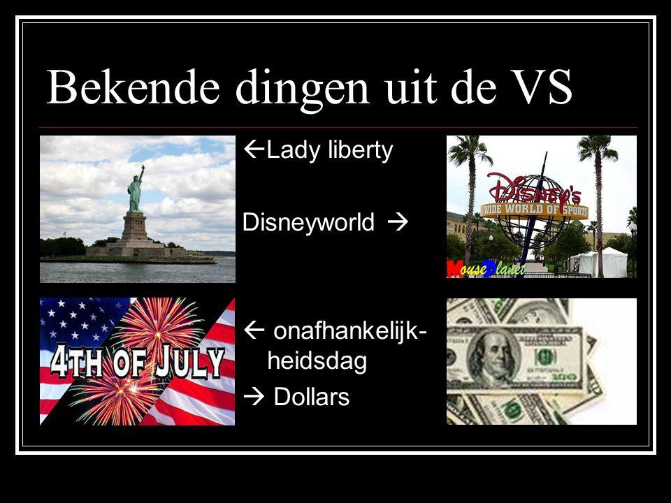 Bekende dingen uit de VS  Lady liberty Disneyworld   onafhankelijk- heidsdag  Dollars