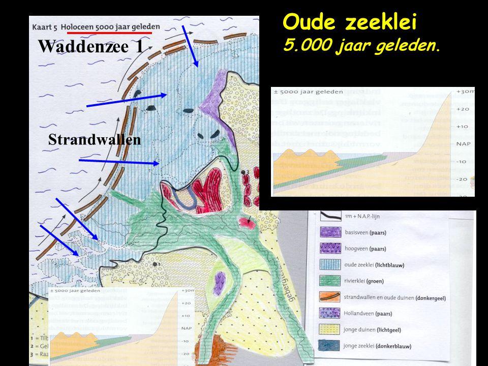 Waddenzee 1 Strandwallen Oude zeeklei 5.000 jaar geleden.