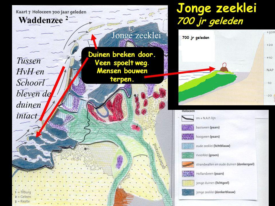 Waddenzee 2 Tussen HvH en Schoorl bleven de duinen intact Jonge zeeklei Jonge zeeklei 700 jr geleden Duinen breken door. Veen spoelt weg. Mensen bouwe