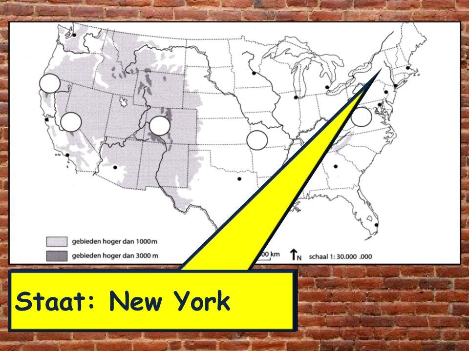 Staat: New York