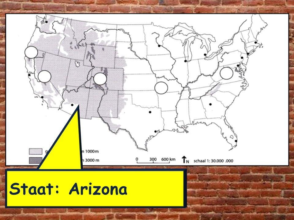 Staat: Arizona