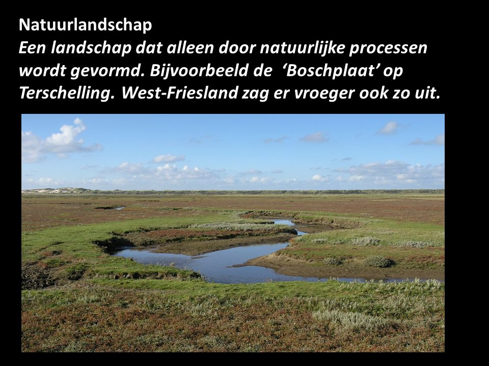Natuurlandschap Een landschap dat alleen door natuurlijke processen wordt gevormd. Bijvoorbeeld de 'Boschplaat' op Terschelling. West-Friesland zag er