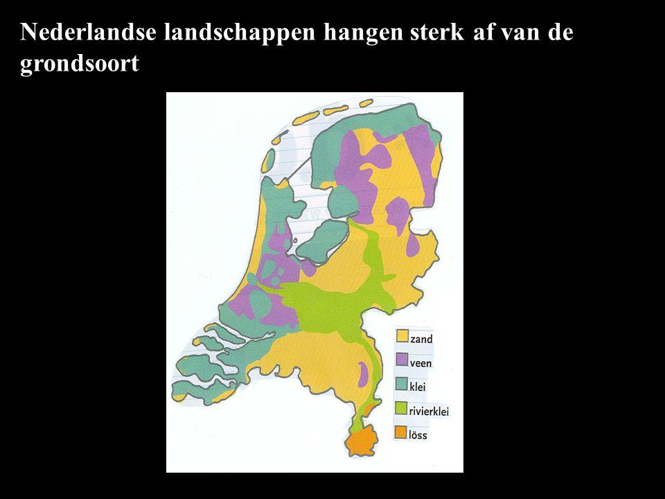 Nederlandse landschappen hangen sterk af van de grondsoort