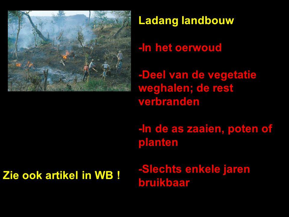Ladang landbouw -In het oerwoud -Deel van de vegetatie weghalen; de rest verbranden -In de as zaaien, poten of planten -Slechts enkele jaren bruikbaar