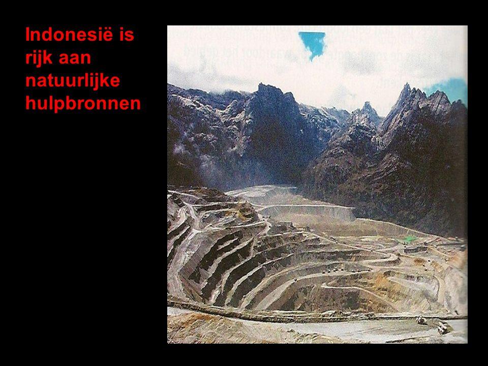 Indonesië is rijk aan natuurlijke hulpbronnen