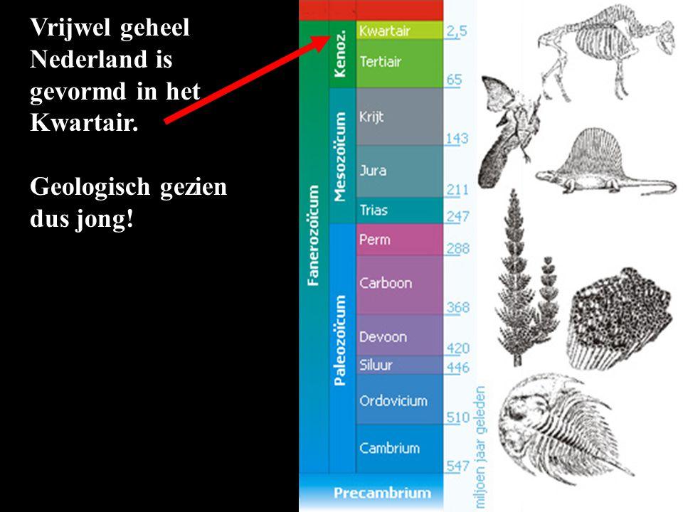 Vrijwel geheel Nederland is gevormd in het Kwartair. Geologisch gezien dus jong!