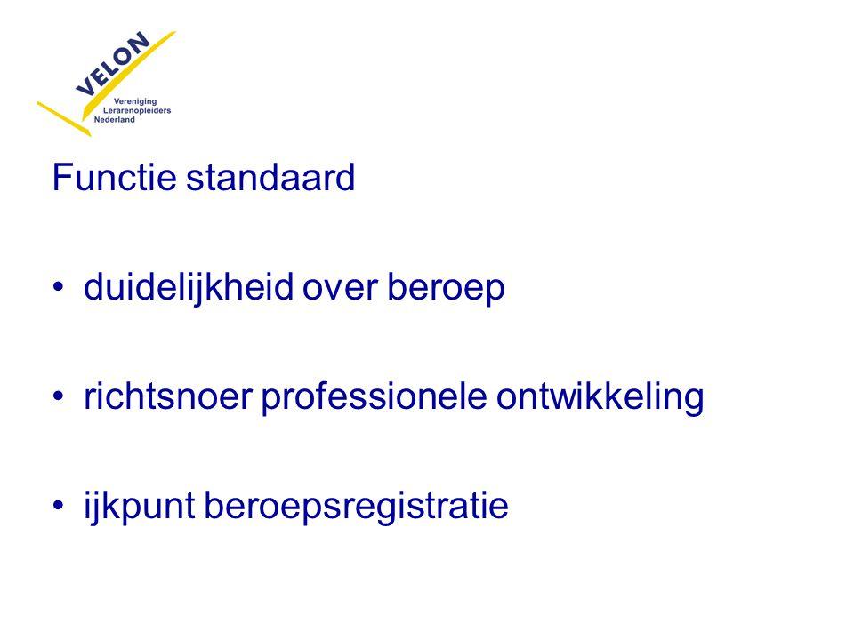 Functie standaard duidelijkheid over beroep richtsnoer professionele ontwikkeling ijkpunt beroepsregistratie