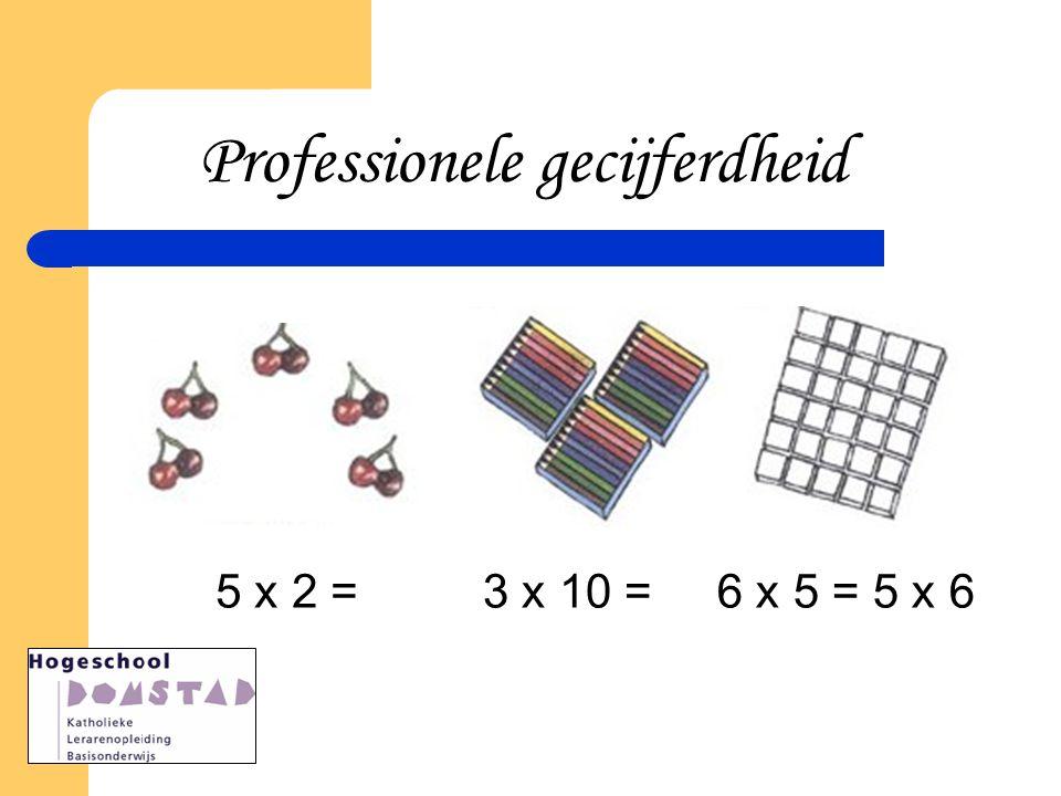 5 x 2 =3 x 10 =6 x 5 =6 x 5 = 5 x 6 Professionele gecijferdheid