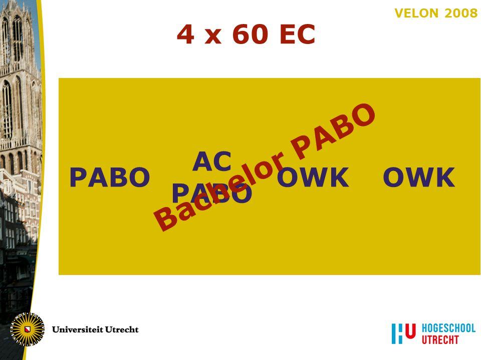 VELON 2008 4 x 60 EC PABOOWK AC PABO OWK AC PABO OWK Bachelor PABO