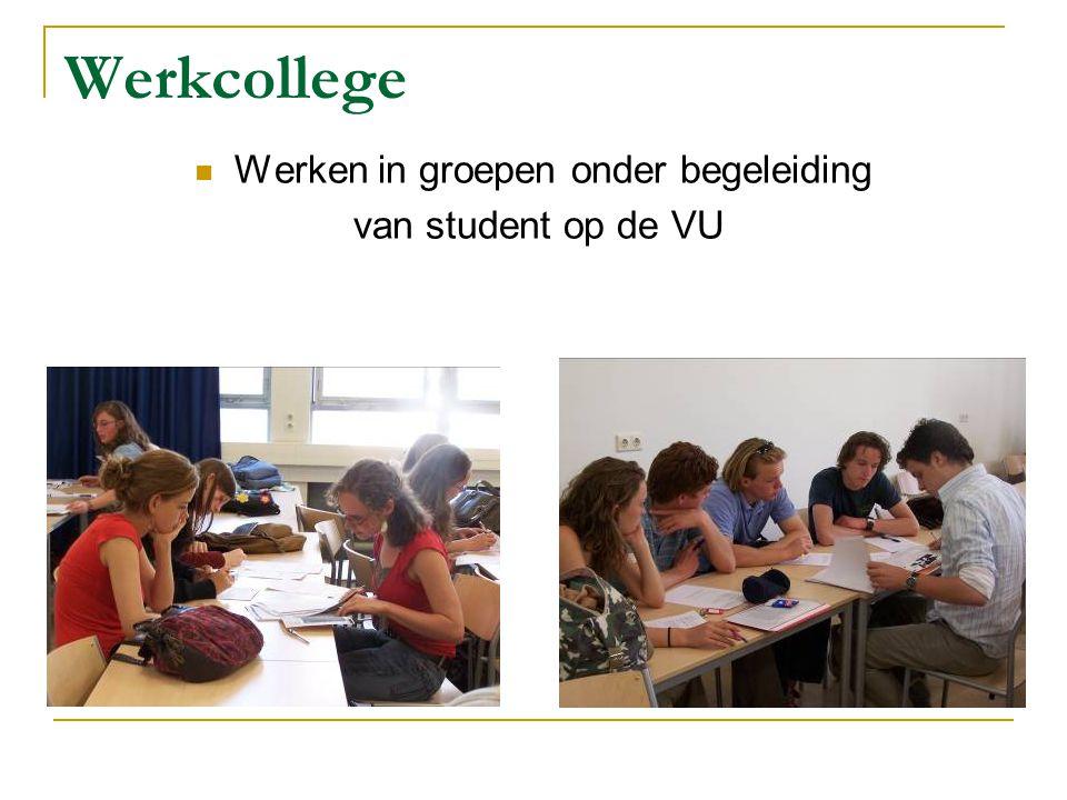Werkcollege Werken in groepen onder begeleiding van student op de VU