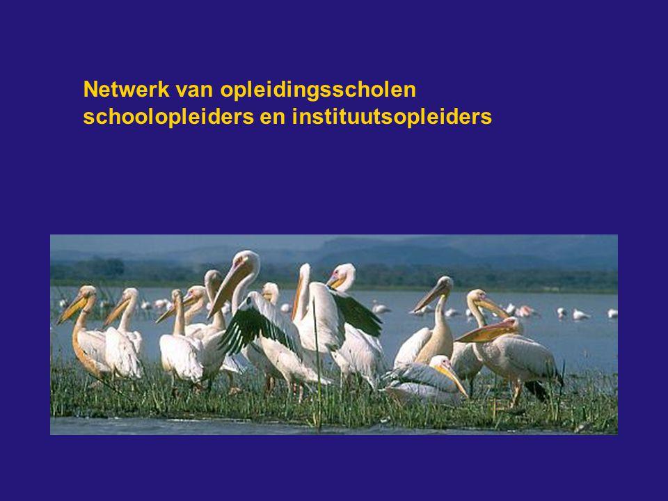 Netwerk van opleidingsscholen schoolopleiders en instituutsopleiders
