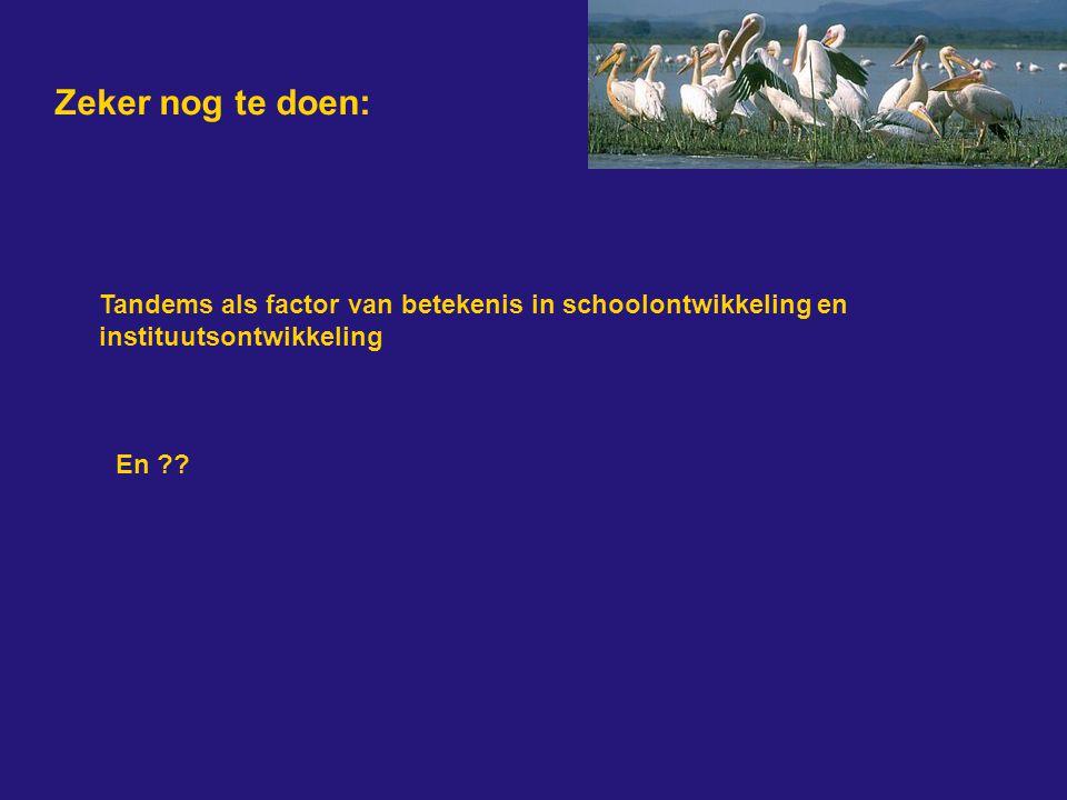 Zeker nog te doen: Tandems als factor van betekenis in schoolontwikkeling en instituutsontwikkeling En ??