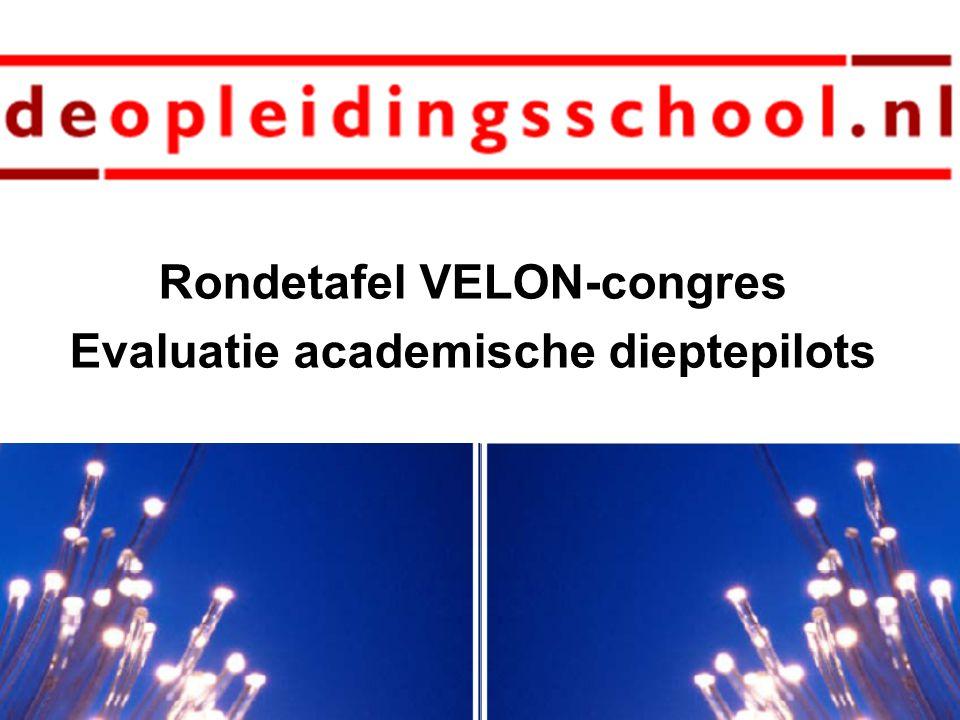 Rondetafel VELON-congres Evaluatie academische dieptepilots