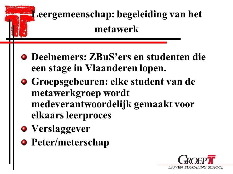 Leergemeenschap: begeleiding van het metawerk Deelnemers: ZBuS'ers en studenten die een stage in Vlaanderen lopen.