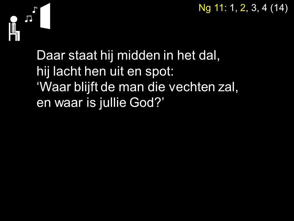 Ng 11: 1, 2, 3, 4 (14) Daar staat hij midden in het dal, hij lacht hen uit en spot: 'Waar blijft de man die vechten zal, en waar is jullie God?'