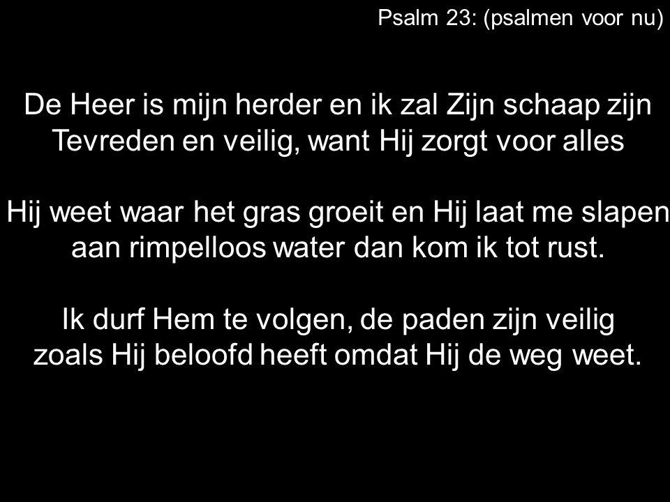 Psalm 23: (psalmen voor nu) De Heer is mijn herder en ik zal Zijn schaap zijn Tevreden en veilig, want Hij zorgt voor alles Hij weet waar het gras groeit en Hij laat me slapen aan rimpelloos water dan kom ik tot rust.